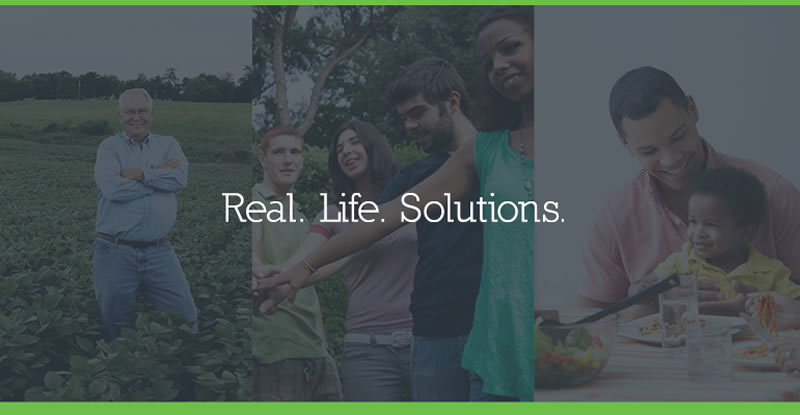 Real Life Solution Banner